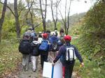 2008_1102山歩き0016.jpg